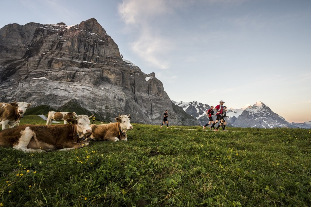 TS_RUN_EIGER-ULTRA-TRAIL_D152121